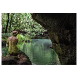 Cartolina Reggia di Caserta - Il bagno di Venere.