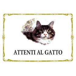 CARTOLINA COLONNESE ATTENTI AL GATTO