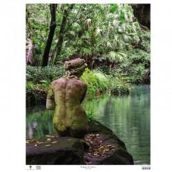 Poster Reggia di Caserta - Il bagno di Venere, Dettaglio (Verticale)